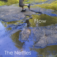 THE NETTLES: Flow